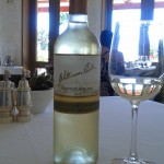 Vino William Cole Sauvignon Blanc Mirador